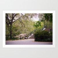 Spring In Central Park. Art Print