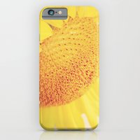 iPhone & iPod Case featuring Sunlight by Charlene McCoy