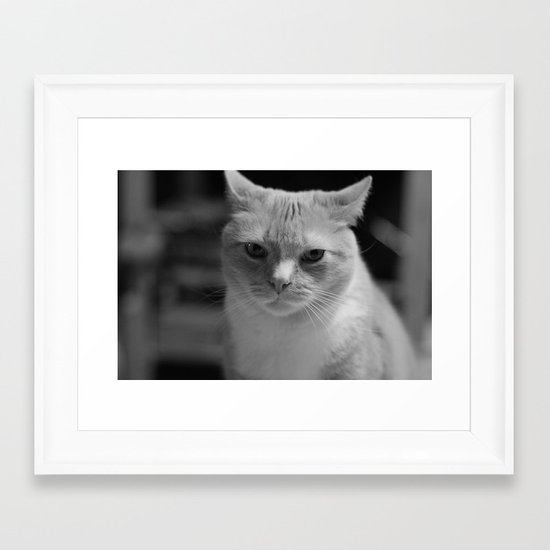 Julius - Whiteout 3 Framed Art Print