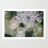 lilacs and candle light Art Print
