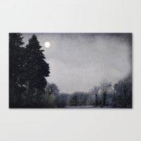 Snowy night Canvas Print