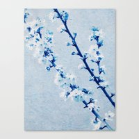 spring in august Canvas Print