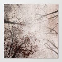 SILENT FOREST 2 Canvas Print