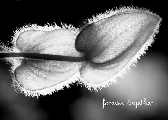 forever together Art Print