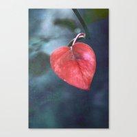 cuore Canvas Print