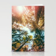 California Redwoods Sun-… Stationery Cards