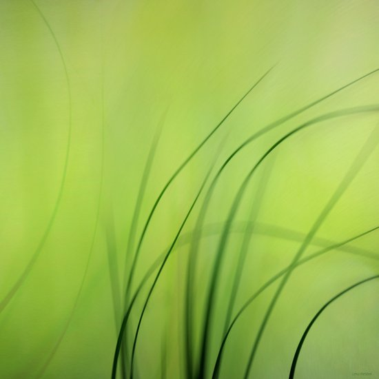 Sway  (Grass) Canvas Print
