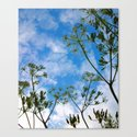Cloud flowers Canvas Print