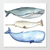 S'whale Canvas Print