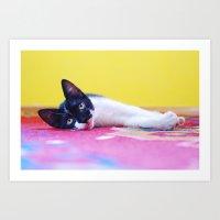 Cat #2 Art Print