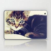 Raja Laptop & iPad Skin