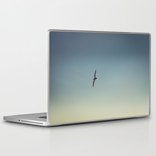 Evening Flight Laptop & iPad Skin