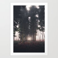 Forests Fog Art Print