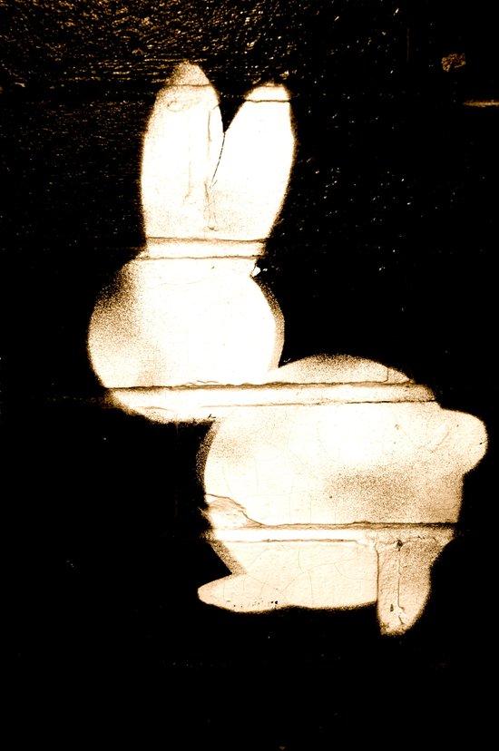 B-Bunny Art Print