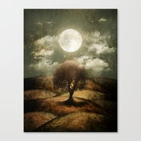 Once Upon A Time... The … Canvas Print