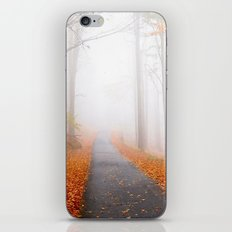 Spirit Forest iPhone & iPod Skin