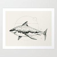 'Wildlife Analysis VIII' Art Print