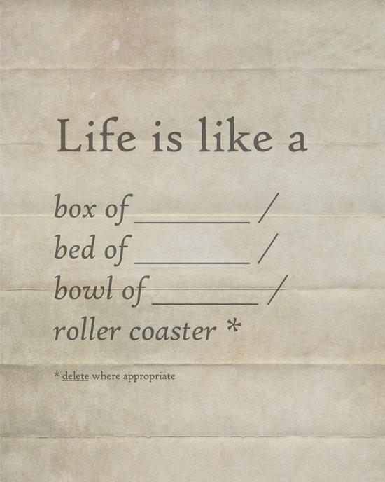 Life is like a _______ Canvas Print