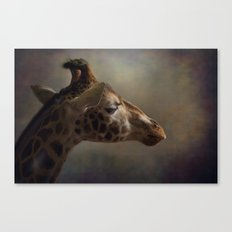 Portrait of a Giraffe Canvas Print