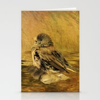 The Bathing Junco Stationery Cards