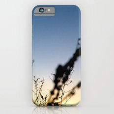 Sunset Contrast iPhone 6 Slim Case