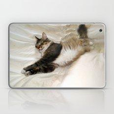 Cat Dreaming Laptop & iPad Skin