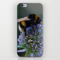 Buzz Fine Art Photograph… iPhone & iPod Skin