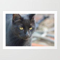 black kitty kat Art Print