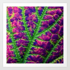 leaf abstract III Art Print