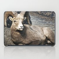 Tom Feiler Sitting Ram iPad Case