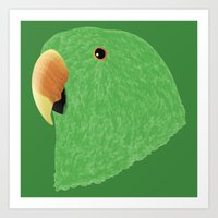 Amazon Eclectus [Male] Art Print