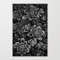 Her Black Soul Canvas Print