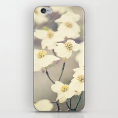 Signs of Spring iPhone & iPod Skin