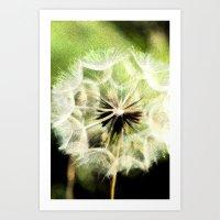 Dandelion Half Art Print