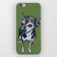 Artie The Chihuahua iPhone & iPod Skin