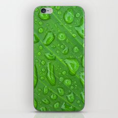 summer raindrops iPhone & iPod Skin