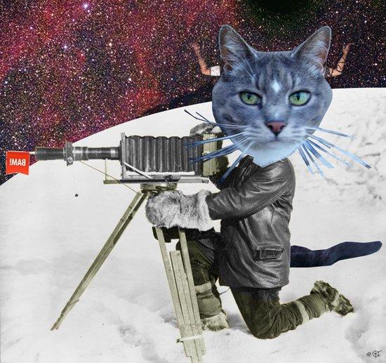 Cat Explorer Art Print