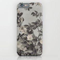 Vintage Hand Colored Dogwood Flower iPhone 6s Slim Case