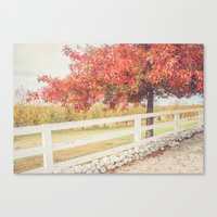 Autumn At The Orchard Canvas Print