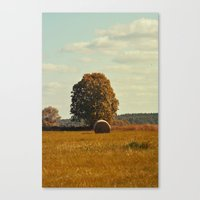 oh hay 2 Canvas Print