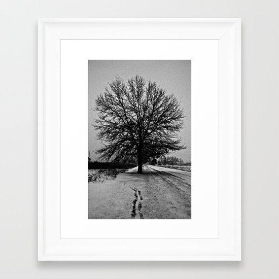 Solus Framed Art Print