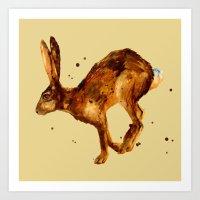 Hare, Hare Cushion, Rabb… Art Print