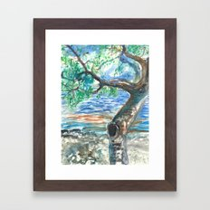 De Soto National Park Florida - Tree by the Water Framed Art Print