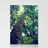 lookingup2 Stationery Cards