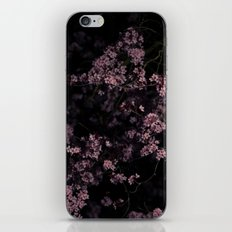Flash Blossom iPhone & iPod Skin