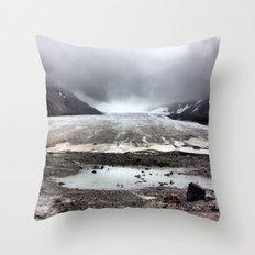 Glacial Pace Throw Pillow
