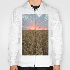 Corn Maze Sunset Hoody