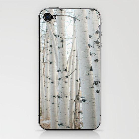 Aspen II iPhone & iPod Skin