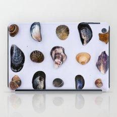 English Seashells iPad Case
