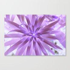 Purple plant Canvas Print